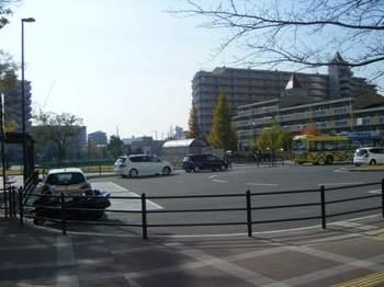 2008_11230013.jpg