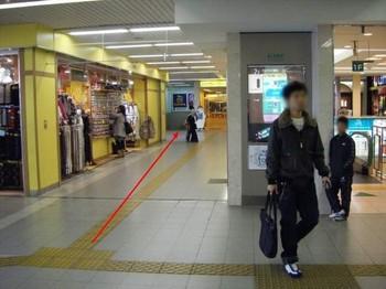 2008_11230025.jpg